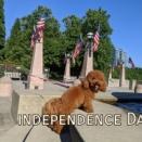 7月4日は独立記念日。ドライブして湖へ行ってきました。