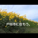 『戸田市が市のPR映像「戸田市に住もう!」を制作』の画像