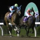 『【関東オークス】武豊騎手騎乗ウェルドーンがV ケラススヴィアは2着で牝馬三冠ならず』の画像