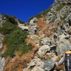 『日本百名山 鷲羽岳.水晶岳へ☆その8 水晶岳山頂♪』の画像
