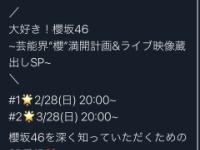 櫻坂46に新番組がキタ━━━━━(゚∀゚)━━━━━!!!!!