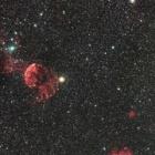 『ふたご座の散開星団(M35)&クラゲ&モンキー星雲付近』の画像