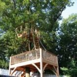 『日本にもある素敵なツリーハウス』の画像