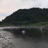 『小鮎と遊ぶ42(2020/6/6 2020 安曇川廣瀬解禁)』の画像