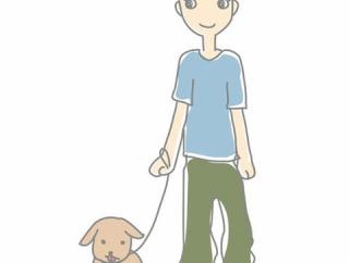 【画像あり】うちの犬かわいすぎてワロタwwwwwwww