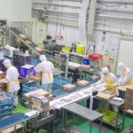 食品工場のバイトが全然単純作業じゃない件