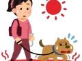 フジ安藤優子アナ(60)の愛犬散歩姿wwwwwwwww 暑すぎて5分で帰宅wwwwwwwwwwwwwww