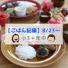 娘の誕生日当日にリクエストされたメニュー!【ごはん記録8/23~】