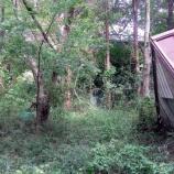 『【番外編】茨城県鉾田市 旧大洋村の廃別荘地』の画像