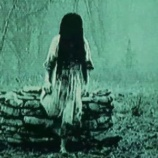 『【神社での恐怖】鳥居に人形を打ち付ける黒髪の女』の画像
