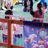 『しつけ教室が開催されました!inワイズドギー射水店』の画像