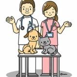 『【職業】獣医さんのイラスト』の画像