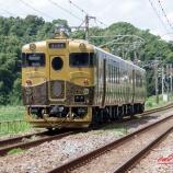 『或る列車~久々のお散歩撮り鉄~』の画像