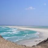 『美しいソコトラ島』の画像