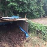 『牛糞堆肥移動>種蒔き>青唐辛子の処理』の画像