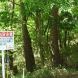 2008年の釣り 6月17日  草津、六合村、嬬恋のサムネイル