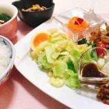 『外食に疲れたら、野菜中心のおうち薬膳ごはん』の画像