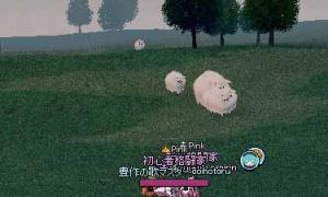 1匹だけ遅れてきた羊wwwwwwwwwwwwwwwww