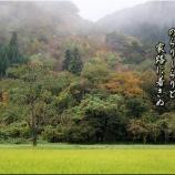 『山王山温泉「瑞泉郷」霊験の露天湯』の画像