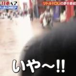 『【乃木坂46】大園桃子、ハトに襲撃される!!それを見て大爆笑する齋藤飛鳥wwwwww』の画像