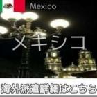 『メキシコインコール求人情報』の画像