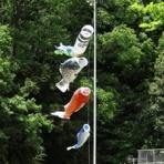 ある日の東京ウエスト動物病院 Blog