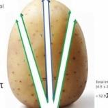 『進化する科学的料理法:ベイクドポテトの新しい切り方』の画像