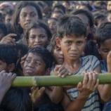 『ロヒンギャ難民の親なし子6千人以上、親の半数は殺害されたもよう』の画像
