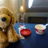 『ANA Business Class 香港〜羽田の旅 アイスを食べたら到着です』の画像