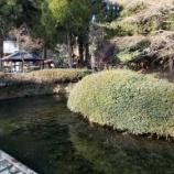 『いつか行きたい日本の名所 白川水源』の画像