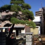 『「松の家」 005』の画像