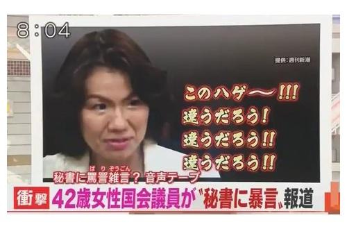 豊田真由子議員の書き起こし見てクッソワロタwwwwwwwwwwwwwwwのサムネイル画像