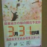 『まもなく桜が開花します』の画像