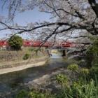 『LAOWA7.5mmF2で巡る犬山2 2019/04/17』の画像