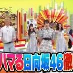 【速報】初耳学で日向坂46徹底分析キタ━(゚∀゚)━!!!!