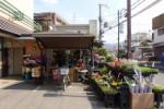 スーパーラッキーのとこにあるお花屋さんが安いっ!~これからのシーズンはガーデニングがモアベター~