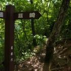 『茅ヶ岳1.704M』の画像
