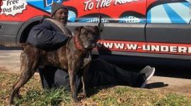 【米国】動物保護施設で火災、ホームレス男性が猫と犬を全頭救出
