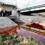 京都・鴨川が真っ赤に染まる…下水管から大量の赤い液体が流入 原因調査中
