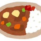 シンガポール旅行中ワイ「今日の昼飯はインドカレーにしよかな」→結果www