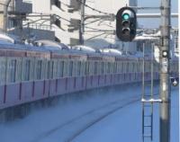 『雪の東京 東京の雪』の画像