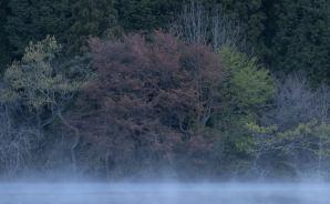 室生ダムは絶妙な撮影スポット