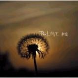『今週の1枚(19)「彩愛/The LOVE」』の画像