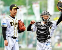 右肘違和感の阪神・小野がネットピッチを再開「まだまだ。確認程度」