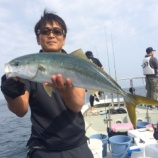 『6月21日 釣果 ジギング・キャステキング』の画像
