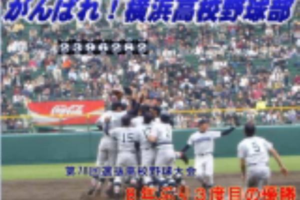 野球 神奈川 県 トーナメント 高校