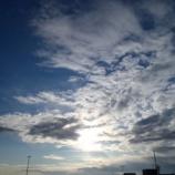 『雷と 雪』の画像
