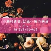 小瀬村真美 個展〜女性科学者の実験ルームの感想〜