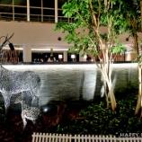 『オンシーズンのルスツリゾート:ウェスティンルスツ(パブリックエリア)』の画像