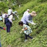 『西武鉄道 第7回「環境活動」2017年5月14日(日)開催』の画像